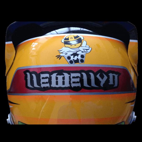 Custom Helmets 66
