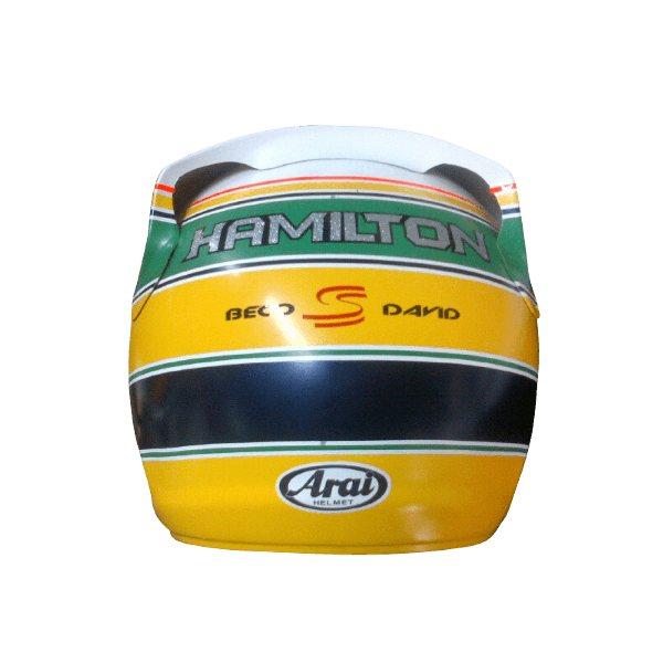 Custom Helmets 74